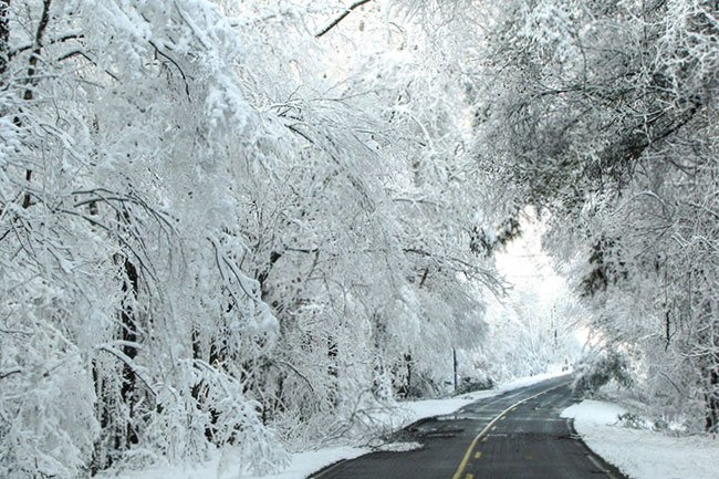 Cypress Methodist Campground Snowy Approach