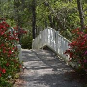 Cypress Gardens White Bridge
