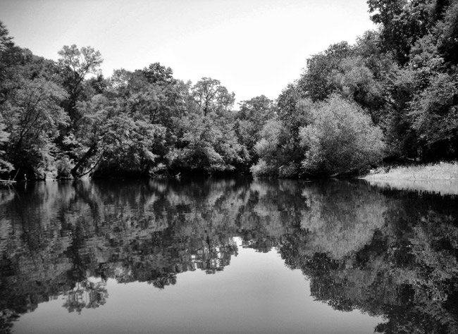 Edisto River Reflection