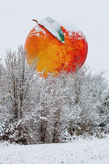 Gaffney Peachoid in the Snow