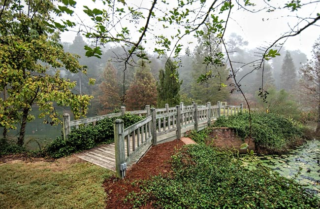 Hopelands Gardens Bridge
