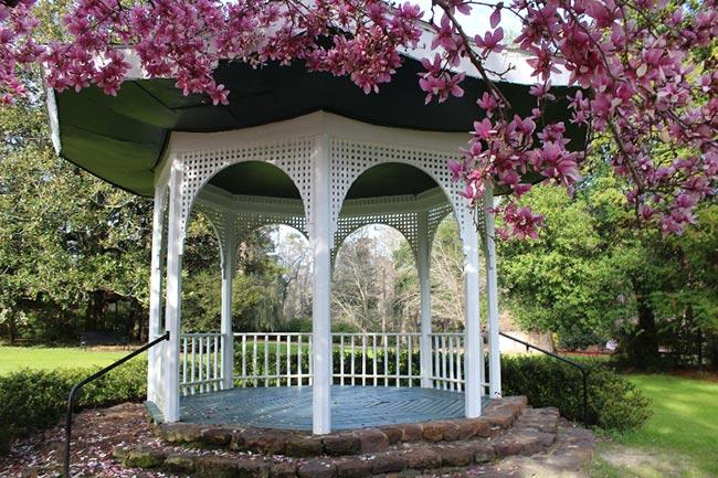 Japanese Gazebo Swan Lake Iris Gardens