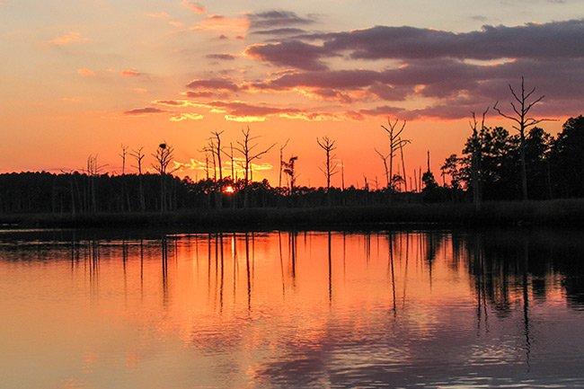 Sampit River Sunset