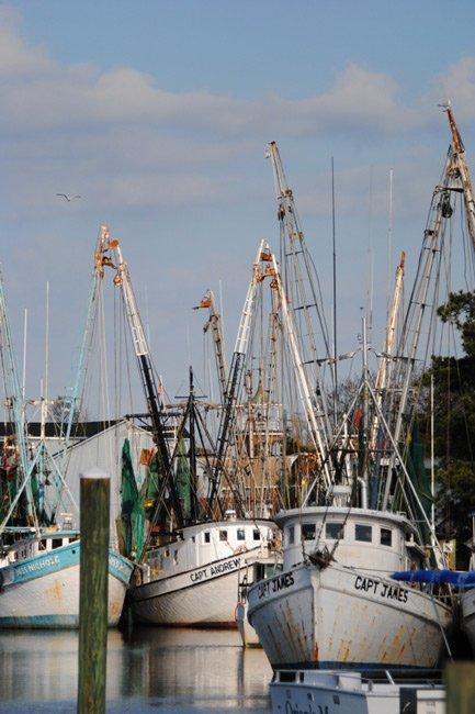 Sampit River Shrimp Boats