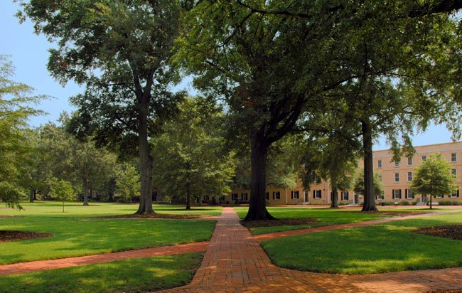 South Carolina Horseshoe