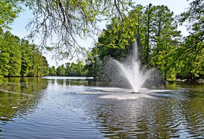 Swan Lake Fountain