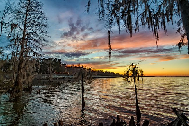 The Hatchery - Lake Moultrie