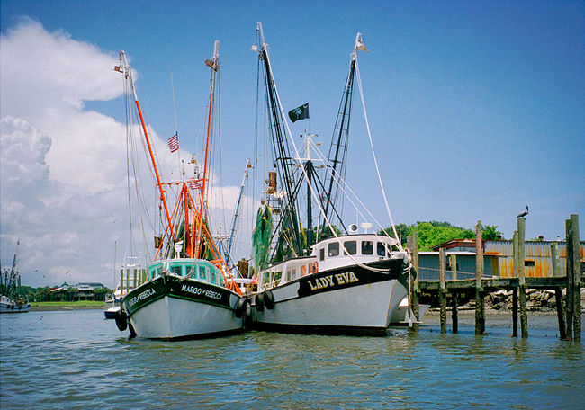 Shem Creek South Carolina