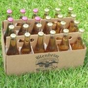 Blenheim's Ginger Ale