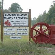 Blizzard Branch