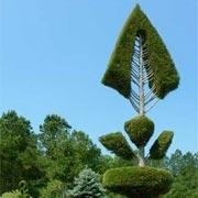 Pearl Fryar's Topiary Gardens