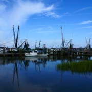 Shrimp Boats at Rest