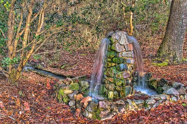 Aiken State Park Artesian Well