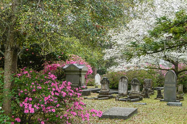 All Saints Church Cemetery