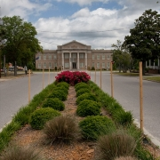 Allendale County Courthouse