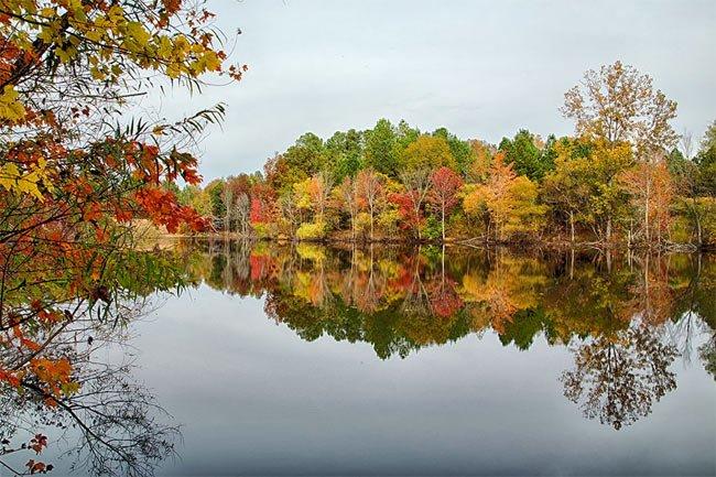 Anne Springs Close Lake Haigler
