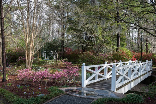 Azalea park summerville south carolina sc for What to do in summerville sc