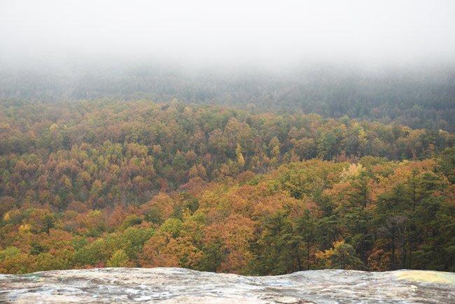Bald Rock Preserve