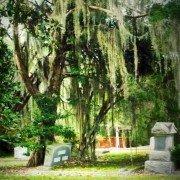 Beech Island Cemetery