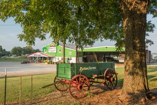 Belue Farms Boiling Springs