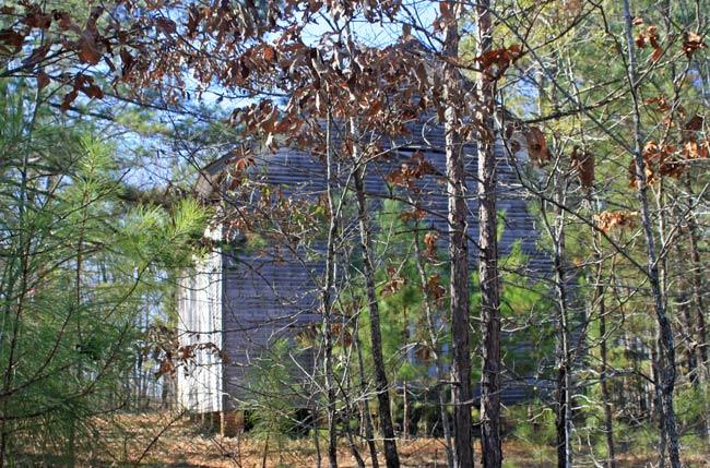 Bethia Presbyterian Abbeville