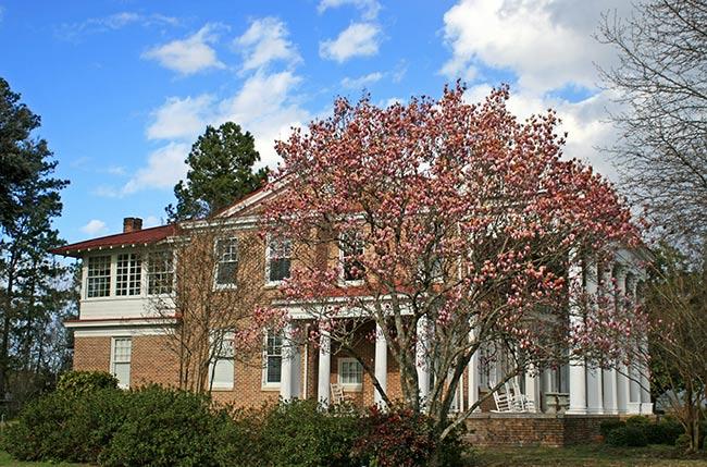 Bishopville SC, Tisdale Manor