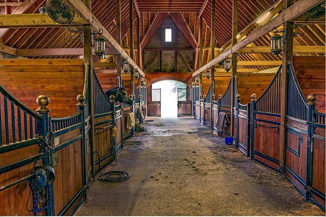 Black Forest Equestrian Center