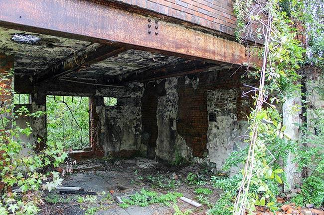 Blenheim Factory Ruins Looking In