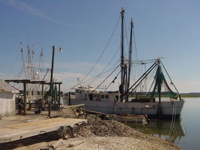 Bluffton Shrimp Trawler