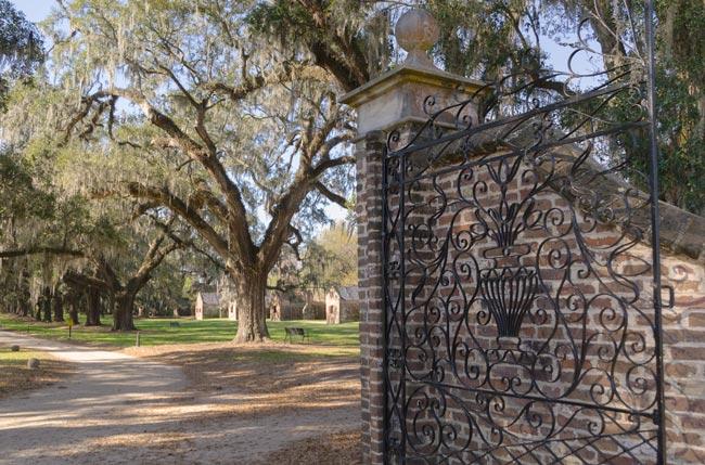 Boone Hall Entrance
