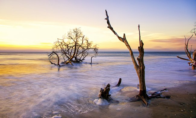 Botany Bay on Edisto