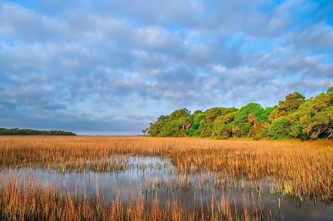 Botany Bay Maritime Forest