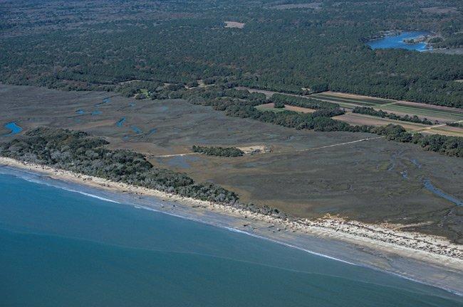 Botany Beach Aerial