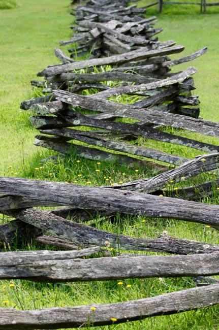 Brattonsville Fence