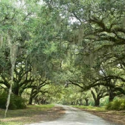 Brewton Plantation