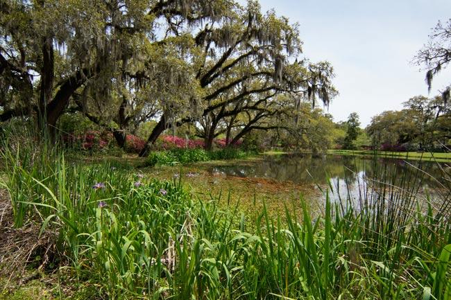 Brookgreen Gardens Pond