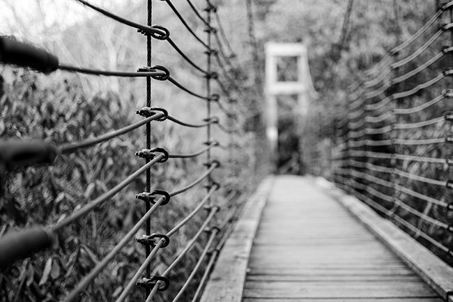 Caeser's Head State Park Swinging Bridge