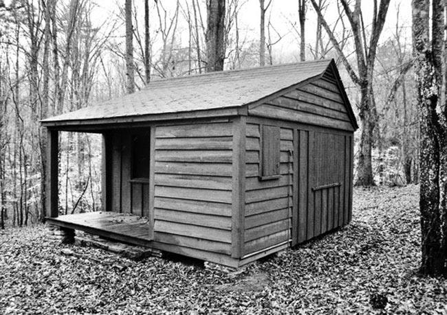 Camp York Cabin