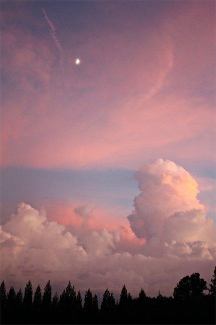 Campobello Sunset