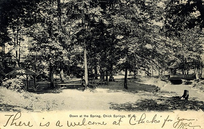 Chick Springs Postcard