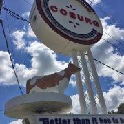 Coburg Cow