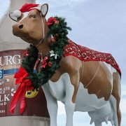 Coburg Cow Charleston Christmas
