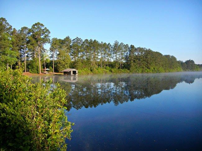 Collum Pond