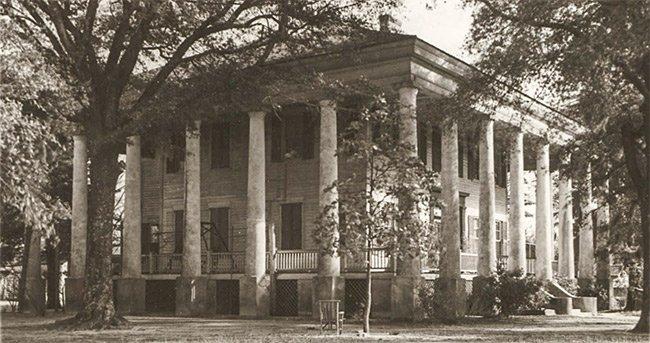 The Columns Plantation