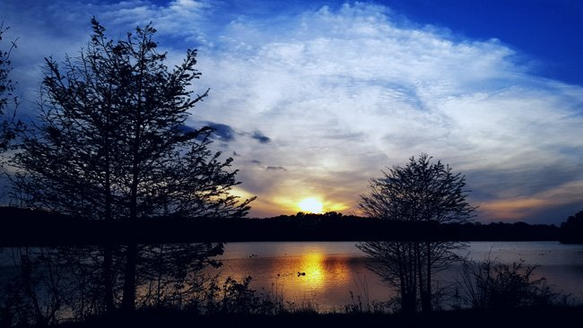 Dargan Pond