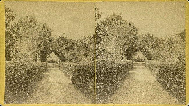 Daufuskie Island Plantation Garden View Stereograph