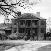 Davis Plantation