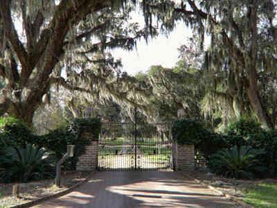 Delta Plantation