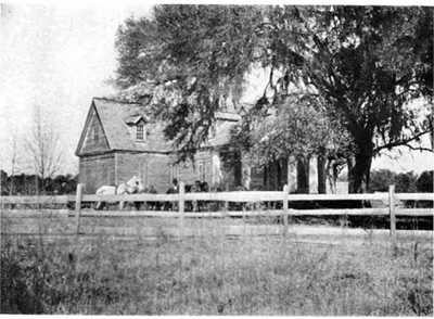 Dockon Plantation