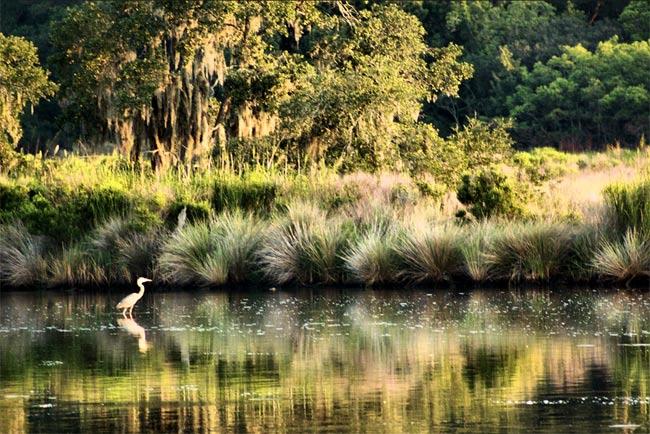 Donnelley Wildlife Area